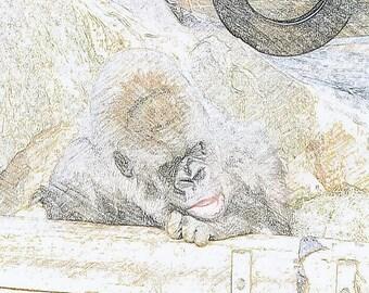 Print Gorilla 1