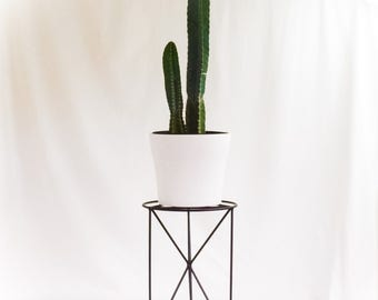 The Tofino - Wire Steel Metal Planter - Plant Stand