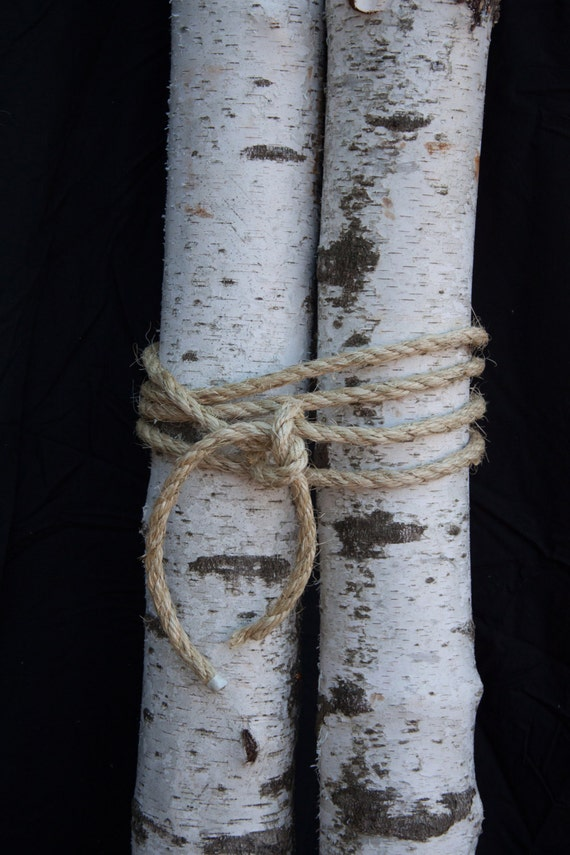 Real Birch Logs 4 5 Diameter White Birch Logs