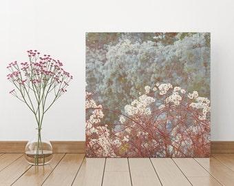 Wild Clematis, 30 x 30 cm