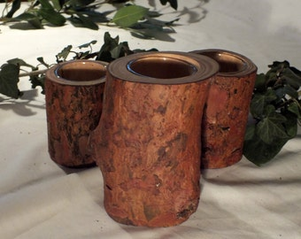 Set of 3 Scots pine candle holders