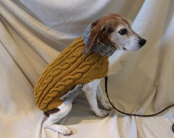 Image result for beagles sweater