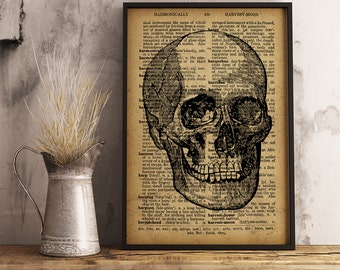 Anatomy Art Skull Poster, Vintage Anatomical Print, Old Dictionary Poster, Skull Dictionary Print, Doctor Gift, Medical School Decor (HA06)