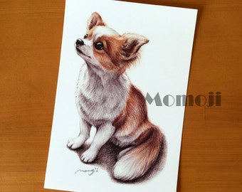 Chihuahua set of 5,  Chihuahua Art Print