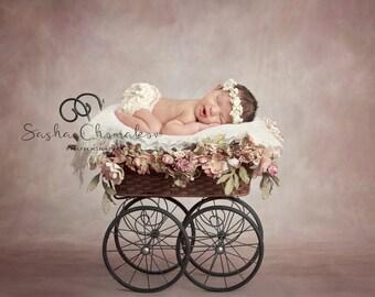 digital backdrop  background newborn baby girl stroller