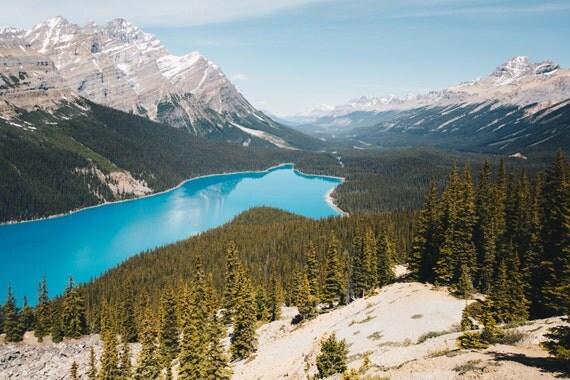 Canada, Blue, Petyo Lake, Trees, Mountains, Banff, Nature, Print, Fine Art, Wall Art, Alberta, Canadian Rockies, Nature Photography