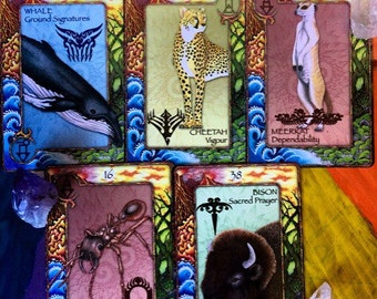 Animal Oracle Reading