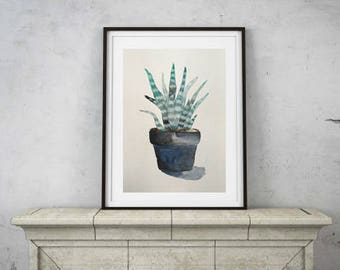 illustration cactus watercolor 9 x 12 inch original