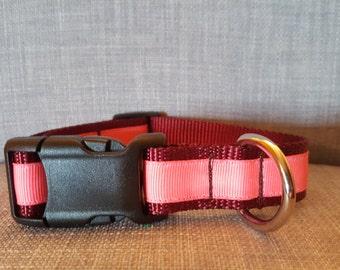 Hot Pink on Burgundy Dog Collar