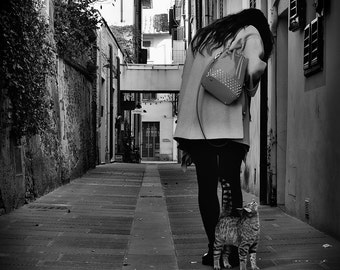 Street Cat - Street photo - cat photo - kitten - photography - art photo - animal photo - black and white photo - city photography