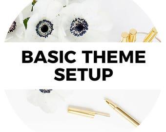 Basic Shopify or 3dcart Theme Setup