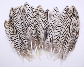 100pcs/lot goose feather Lady Amherst Feather Natural Fly/Fishing/Craft
