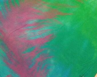 Dreamy Feather Print Long Sleeve V-Neck Shirt