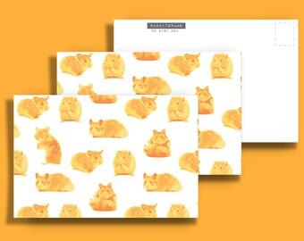Three (3) Hamster 4x6 Postcards