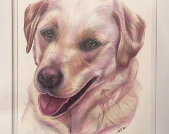 "8""x10"" Custom Pet Portrait"