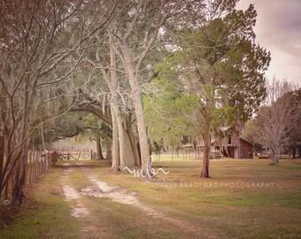 Farm Barn digital background