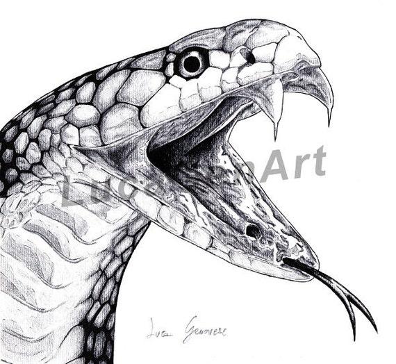 Super Cobra snake design fait main impression numérique fine art TS79
