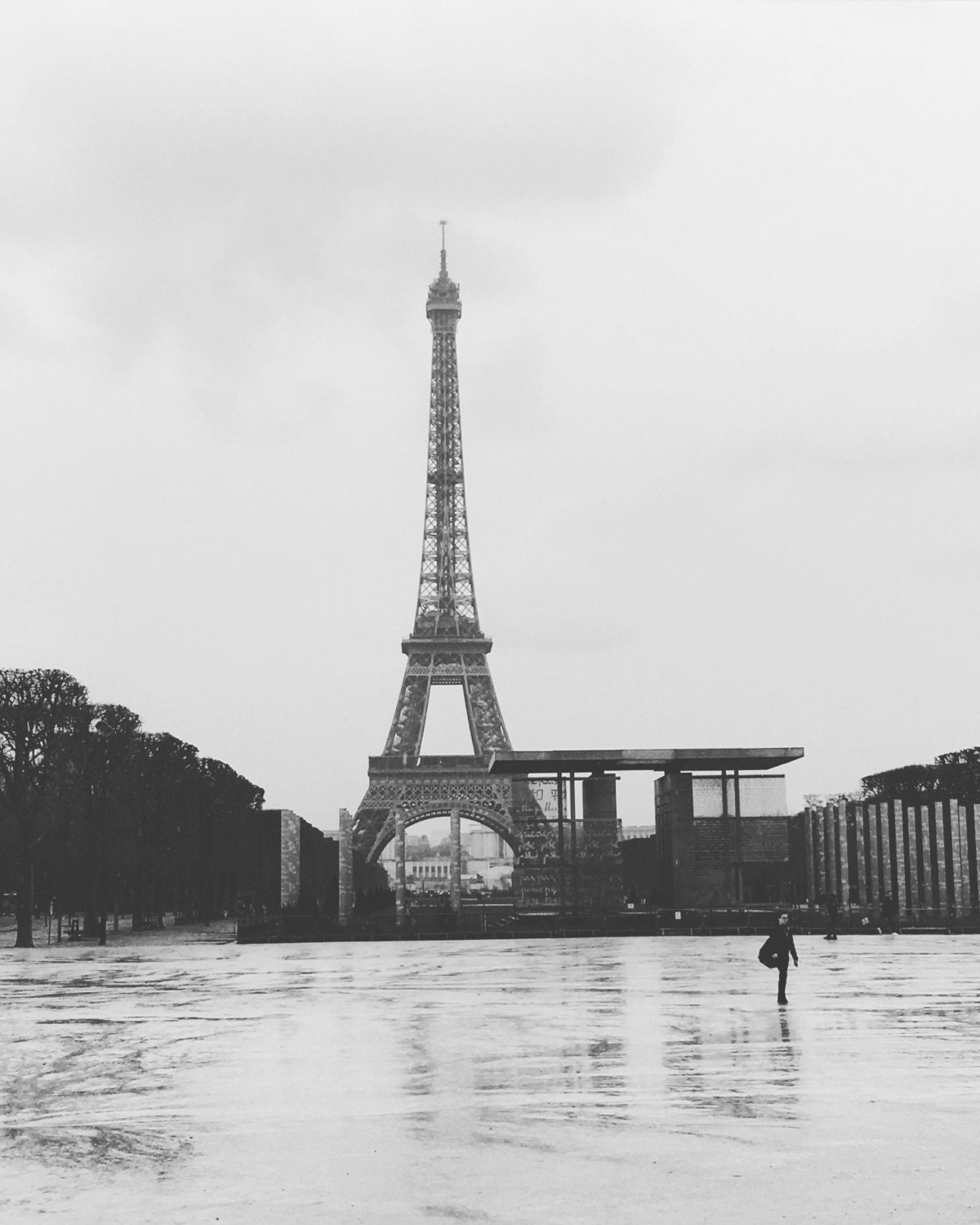 Paris Photography, Paris Wall Art, Black And White Photography, The Eiffel  Tower Wall Art, Eiffel Tower Photography, French Decor