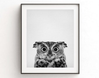 Owl print wall art nursery print instant download printable poster nursery decor animal print kids room black and white photo minimalist
