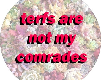 """Terfs Are Not My Comrades Pinback Button (2 1/4"""")"""