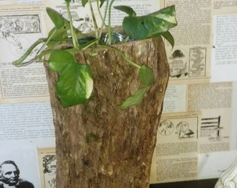 Rustic log planter