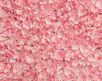 Silk Blush Pink Hydrangea Backdrop Panel 4/pack