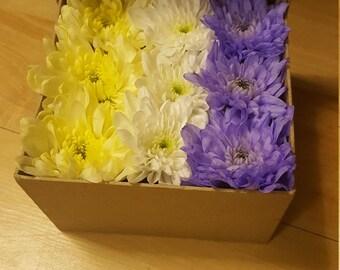 Chrysanthemum flower box