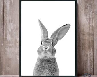 Rabbit Print, Animal Wall Art, Woodland Nursery Decor, Rabbit Poster, Black and White, Animal Print, Printable Wall Art