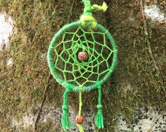 9cm S vibrant green tree frog dreamcatcher