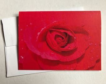 "Red Rose 3""x5"" blank card with envelope."