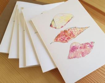 Watercolor Seashells Blank Note Cards - Seashore Note Cards - Seashell Cards - Seashell Trio Cards - Beach Watercolor Note Cards - Box of 6