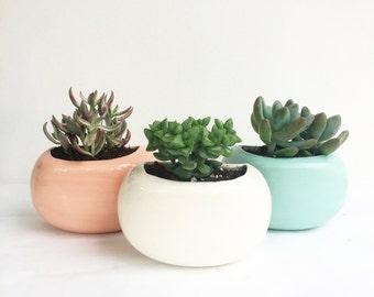 Handmade Modern Wall planter or Desktop planter