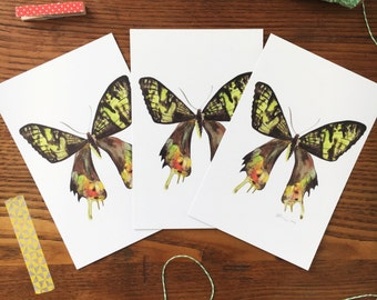 Butterfly Postcard. Colorful Butterflies. Watercolor Butterfly Card. Butterfly Art. Gift for Friend. Set of 3 Cards. Butterfly Painting