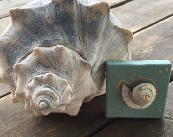 Channel Whelk Sea Shell Painting Acrylic Channel Whelk