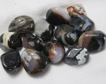 Black Sardonyx Tumbled  Healing Stones Healing Crystals Chakra Meditation Reiki Enery