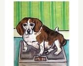 30 Off Beagle on a Diet Dog Art Print   JSCHMETZ pop art FOLK art MODern