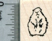 Tiny Groundhog Rubber Stamp A31618 Wood Mounted