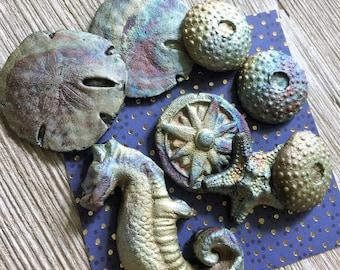 81. Raku Wondrousstrange Urchin Seastar Sand Dollar Sea Horse Compass Rose Inspired Cabochons Blue Silver Rust Gold Magenta  Collection