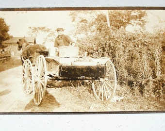 Antique Horse Drawn Honey Wagon Cart  RPPC Photo