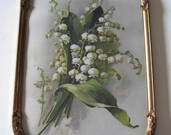 Catherine Klein, Lily of the Valley, Art Print, Convex Glass, Antique Frame, Half Yard Long