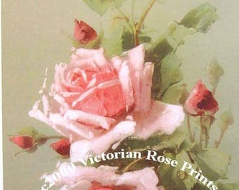Victorian Pink Roses, Art Print, Catherine Klein, Half Yard Long, Shabby Chic Decor, CP341