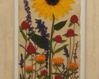 Summer Sunflower with White Cedar Frame