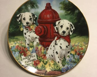"""Dalmatian Collector Plate """"Please Don't Pick the Flowers"""""""