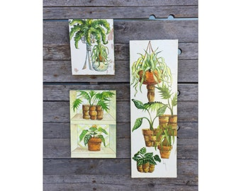 House Plants - Plant Art - Plant Painting -Plant Paintings - Wooden Plaques - Wood Plaques - Jungalow Decor - Horticulturalist - Plant Lover