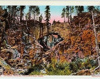 Yellowstone National Park Vintage Postcard - The Natural Bridge (Unused)