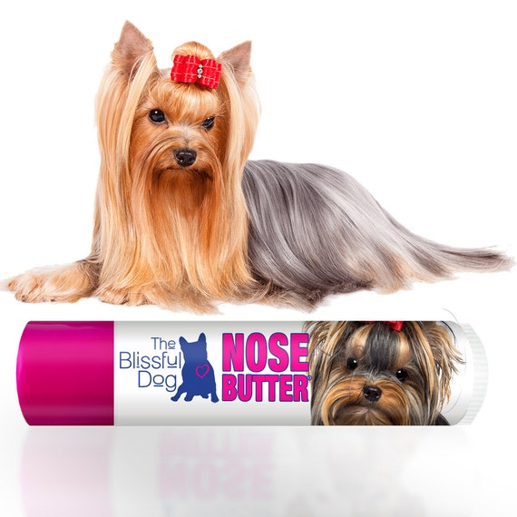Bridal Shoes Yorkshire: Yorkshire Terrier NOSE BUTTER® Handcrafted All Natural Balm
