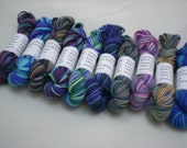 Mini Skeins - BMFA Socks that Rock lightweight 6g set of 10 (set 23)