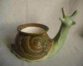 Snail African Violet Pot/Planter