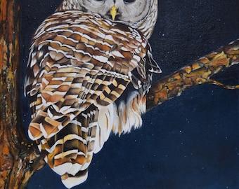 "ORIGINAL Oil Painting, ""Night Owl"", Bird, Barred Owl, 14"" x 18"""