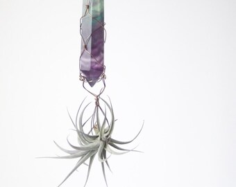 Crystal Air Plant Display, Wire Wrapped Fluorite Air Planter, Deep Purple And Green, Mystical And Spiritual Gift Idea
